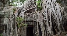 Cambodia Angkor (29)