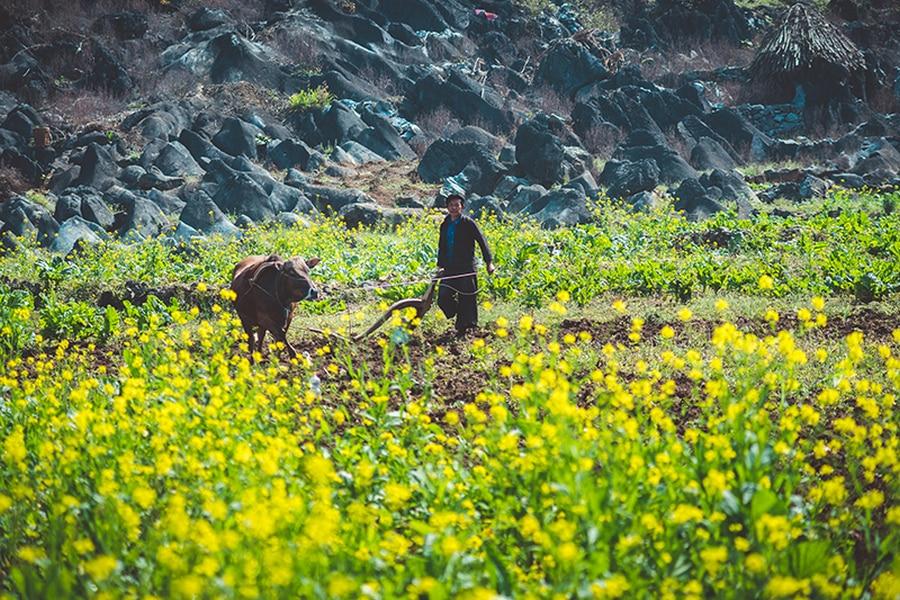 Far north Vietnam