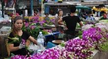 bangkok flower market (2)