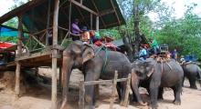 thailand-chiang mai (10)