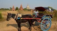 Myanmar_8