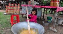 siem reap - palm sugar making village (3)