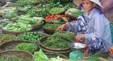 7-hoi-an-market-Visit