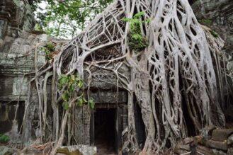 Cambodia Soft Adventure